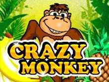 Играть в Crazy Monkey
