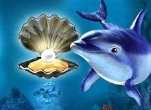 Жемчужина Дельфина в демо